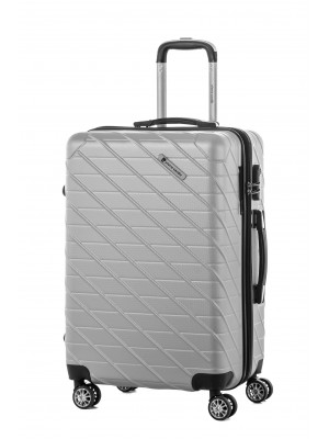 Valise grande taille gris